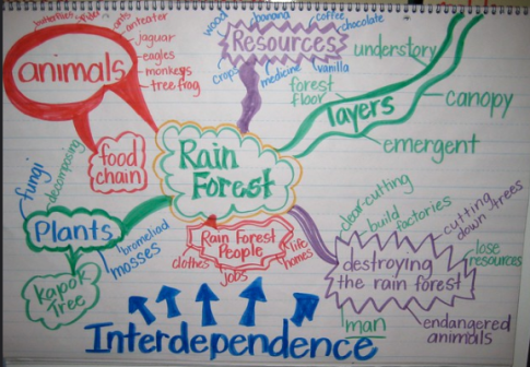 An example of a completed mind map - end of topic.