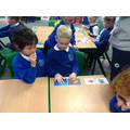 We sorted pictures of animals into groups.