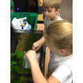 Josh and Indigo are this week's fishkeepers.