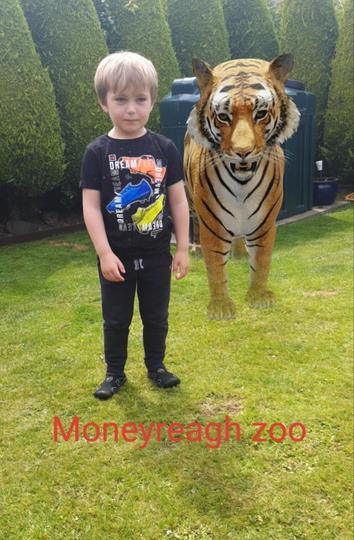 Looks like Freddie has his own zoo!