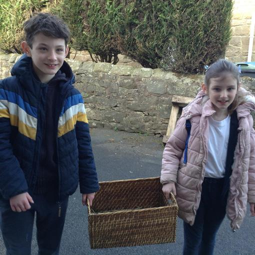 Seth and Esme brought real life chicks into school!