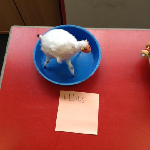 Ellis and his winning sheep!