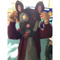 Some super animal projects from Year 1!