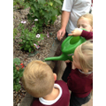 We have some budding gardeners in Year 1.