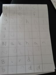 Nathan's lovely writing.
