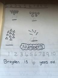 Brayden's work.