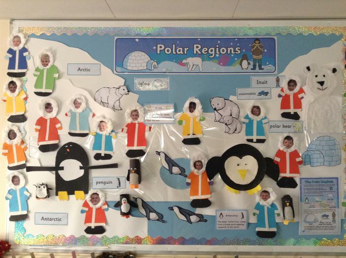 Polar Region display