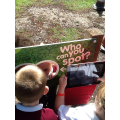 Searching for clues to find the Gruffalo