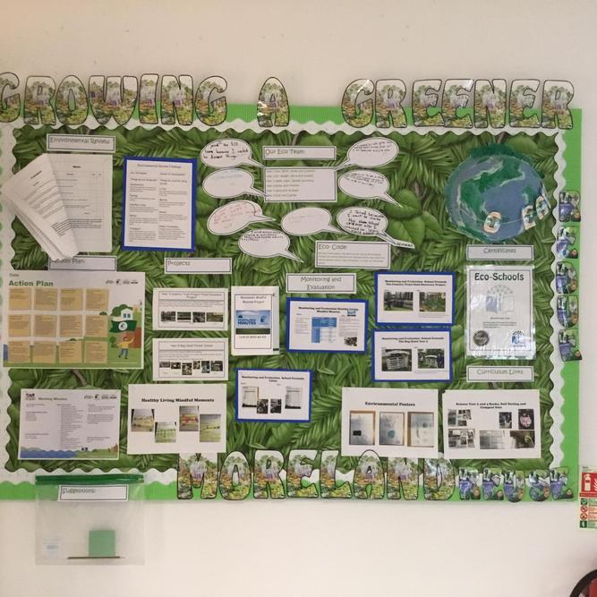 Our Eco Board