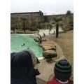 Cotswold Wildlife Park trip