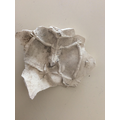 Making a mould and cast imprint fossil