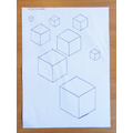 Nelly drew some cubes in maths.