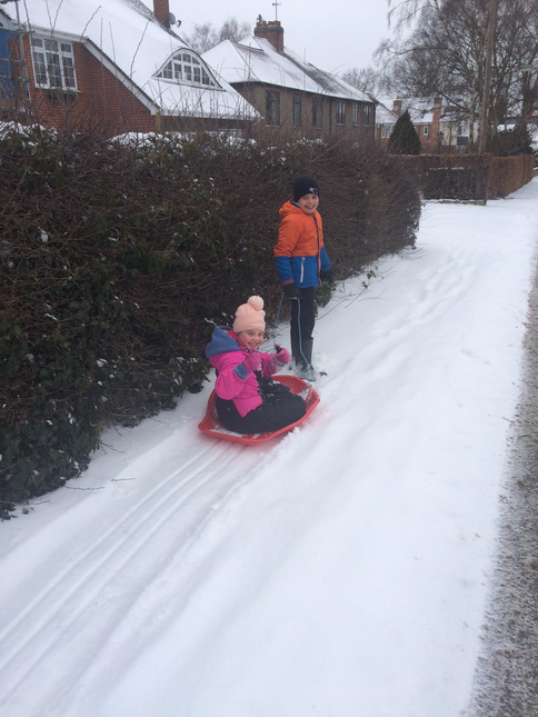 Daisy and Alfie sledging