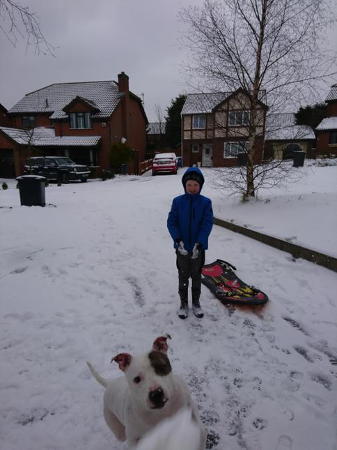 Paddy and his dog in the snow