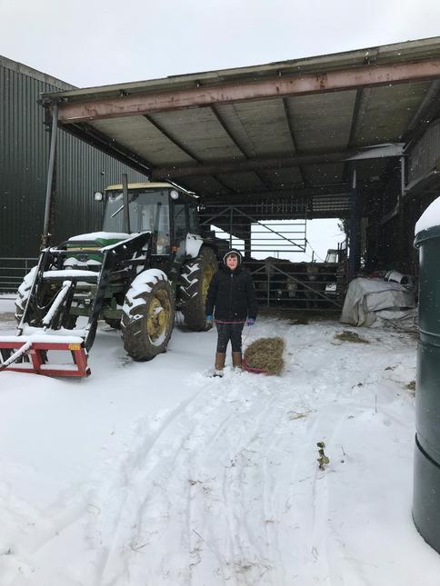 on the farm.