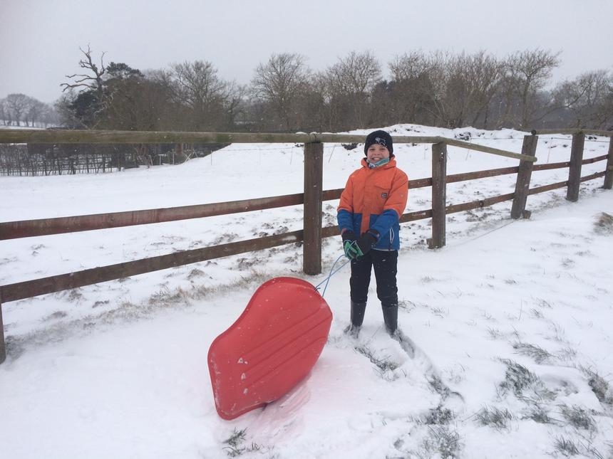 Alfie enjoying snow day