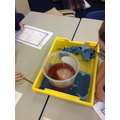 With food colouring.The ice didn't change colour!