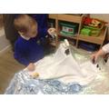 We explored Arctic animals.