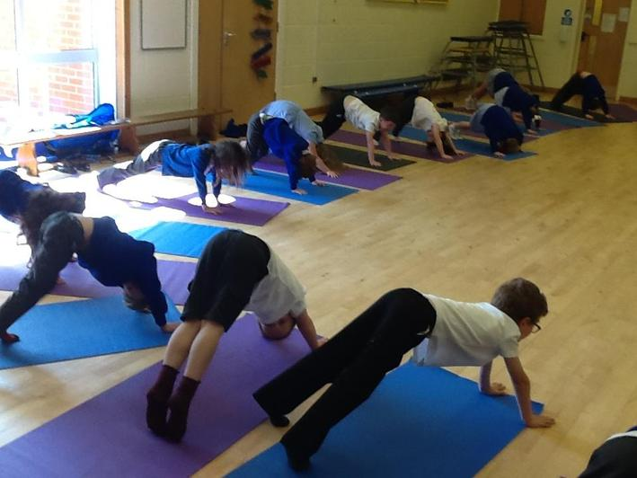 Year 1 - Yoga with Stevi