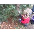 We collected Winter treasures.