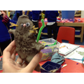 We made Gruffalo characters out of clay