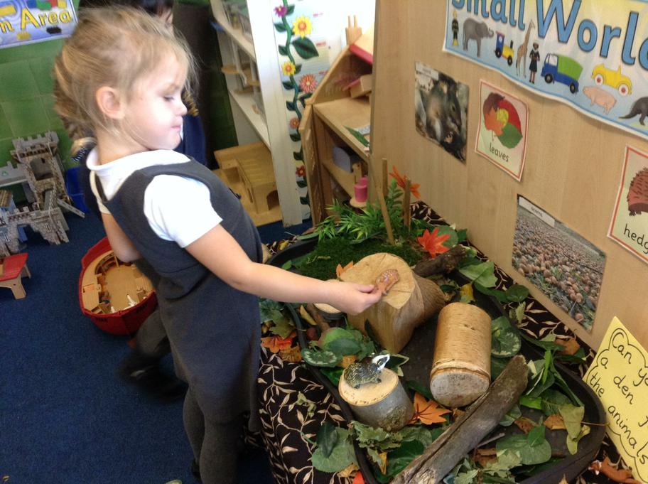 Finding animals hiding in the Autumn leaves