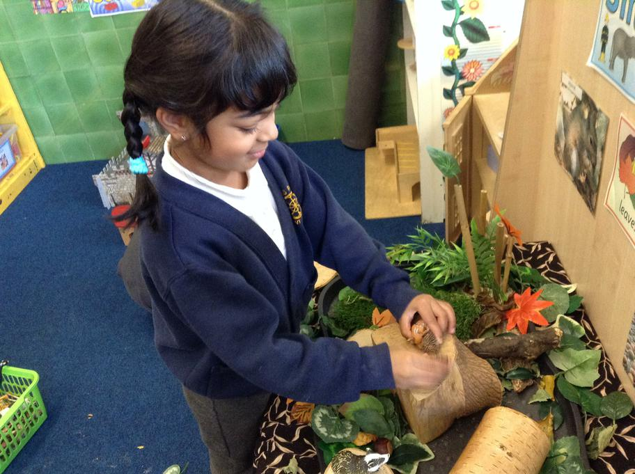 Making cosy homes for the wodland animals.