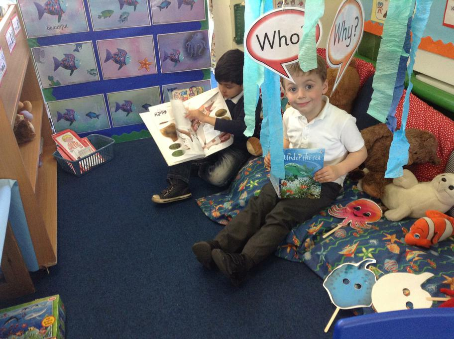 Finding facts out about sea creatures
