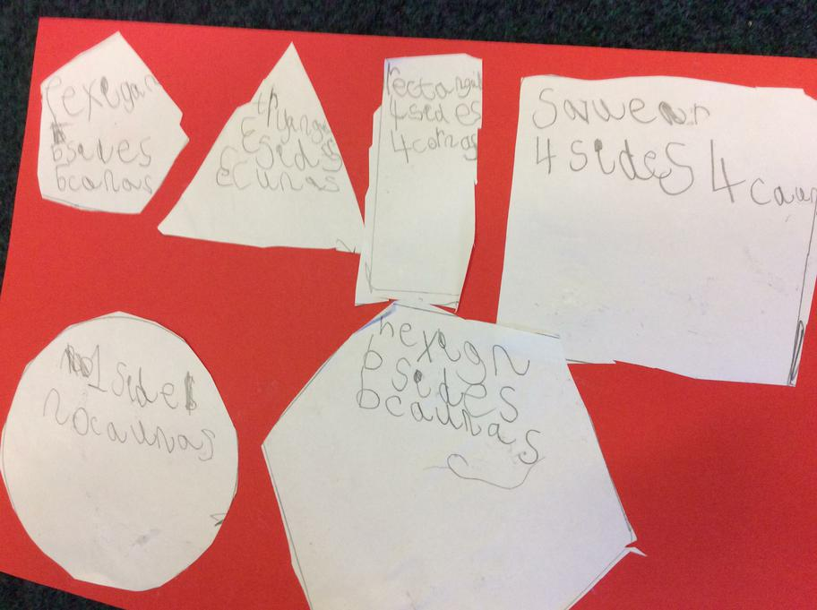 Hana cut out and wrote the shapes properties