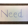 Year 1C discussed needs