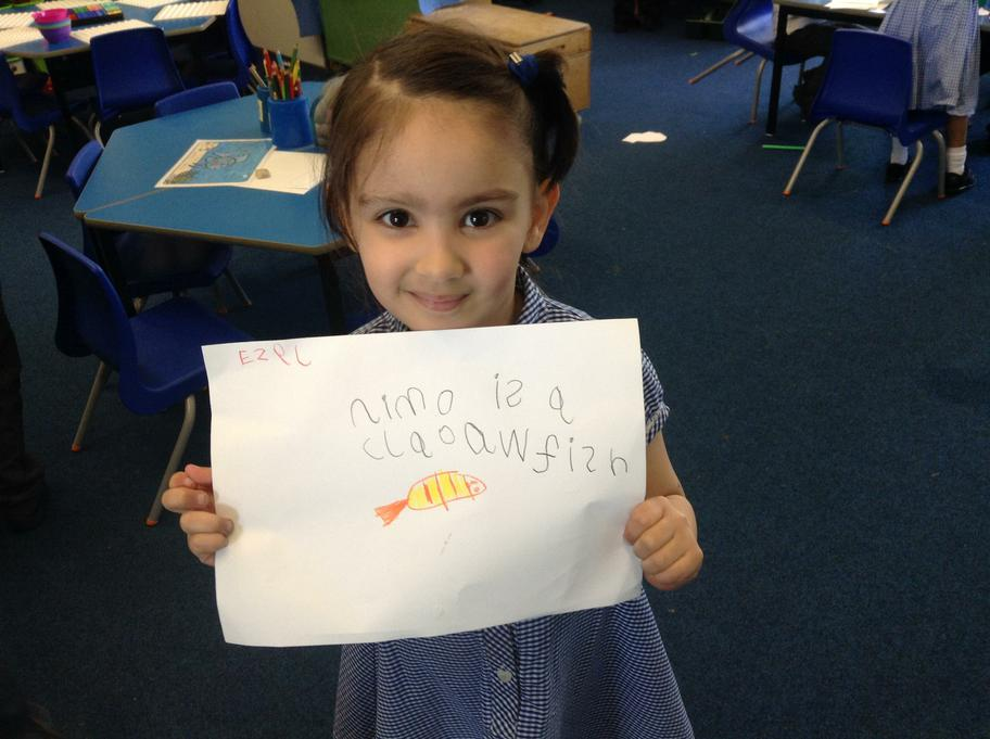 Ezel wrote about a famous Clown fish!