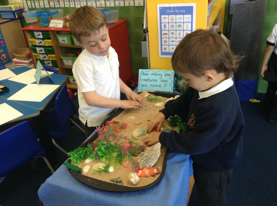 Finding sea creatures and talking about them