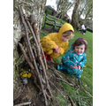 We made a den for our spiders