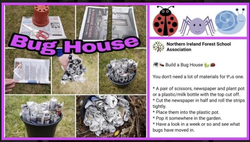 Can you make a bug hotel?
