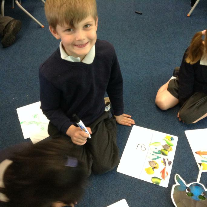 Counting the fish and finding the total