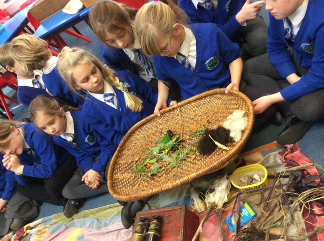 Looking at Roman herbs, spices and flowers.