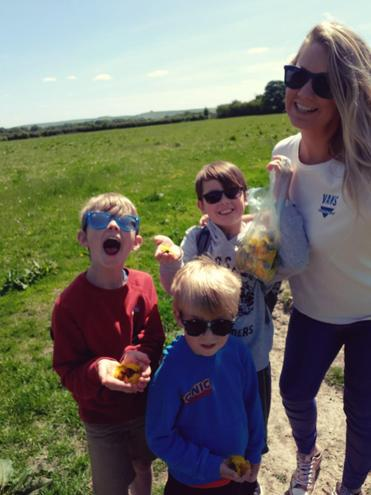Collecting dandelions to make honey!