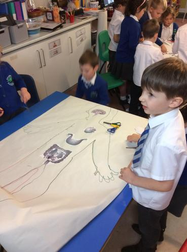 We have started to explore the wonderful human body in our science!