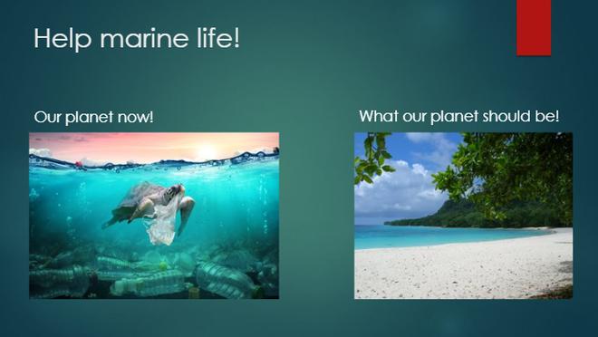 Archie's plastic pollution PPT