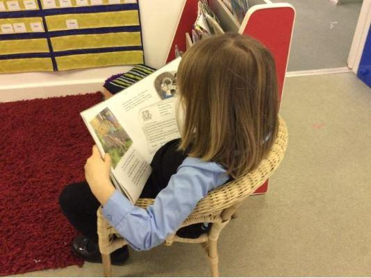 Enjoying books in the library lab