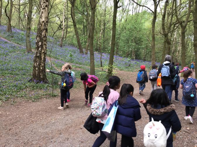 Year 34 walk to the Outwoods