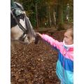 We met Frankie the horse