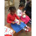 Nailah and Amilah brushed the Guineapigs