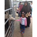 Siraad fed a horse with her Mum.