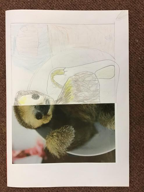 Lily's Sloth