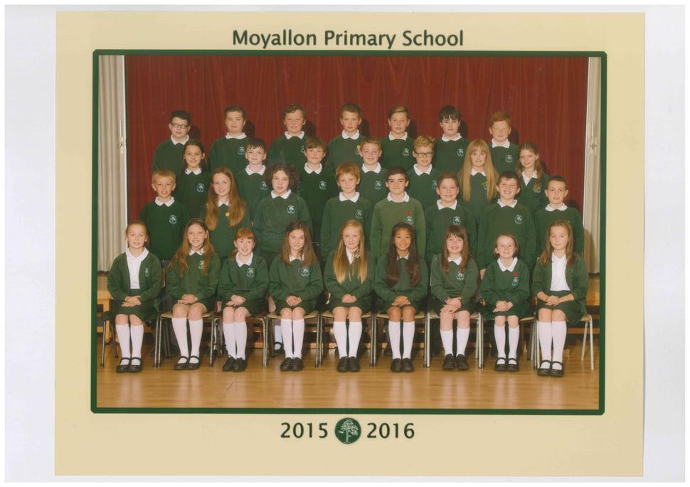 Primary 7