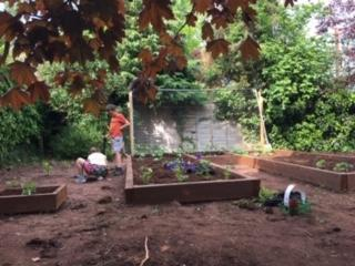 You have made some great raised vegetable beds.