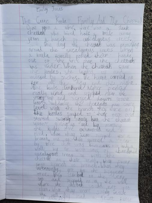 Emily wrote a 'fantastic' story!