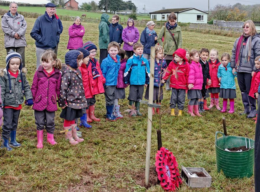 Commemorative Tree Planting – Reception