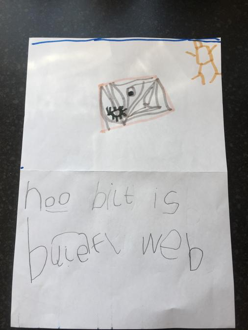 Max's spider writing and picture